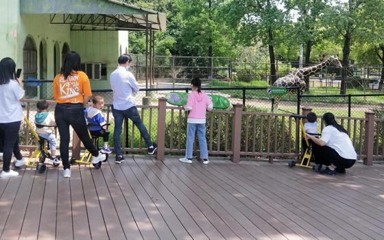 花粉共享童车 给孩子一个不一样的童年